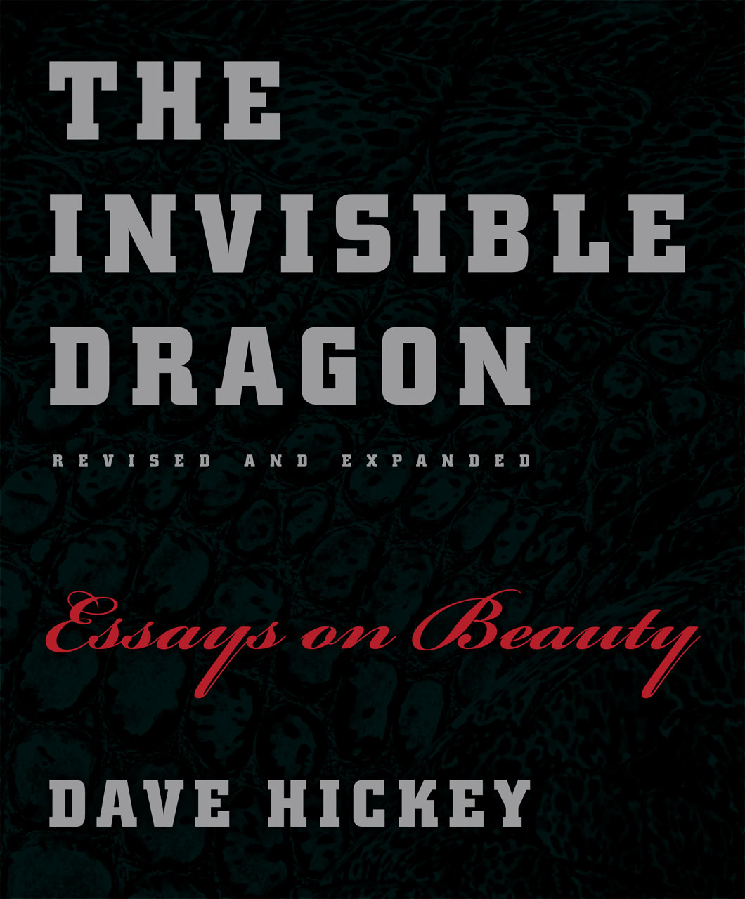 dave hickey  dave hickey s the invisible dragon on